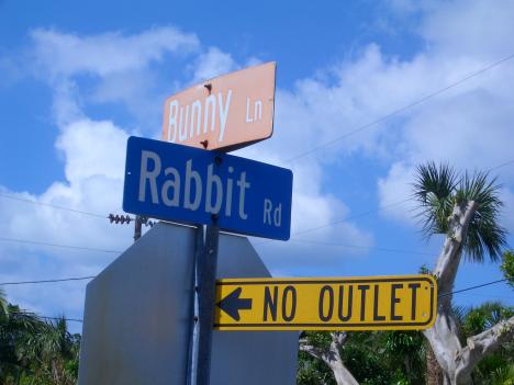 Altschuler Bunny & Rabbit
